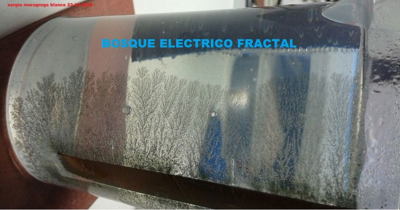 Bosque electrico fractal Bosque19