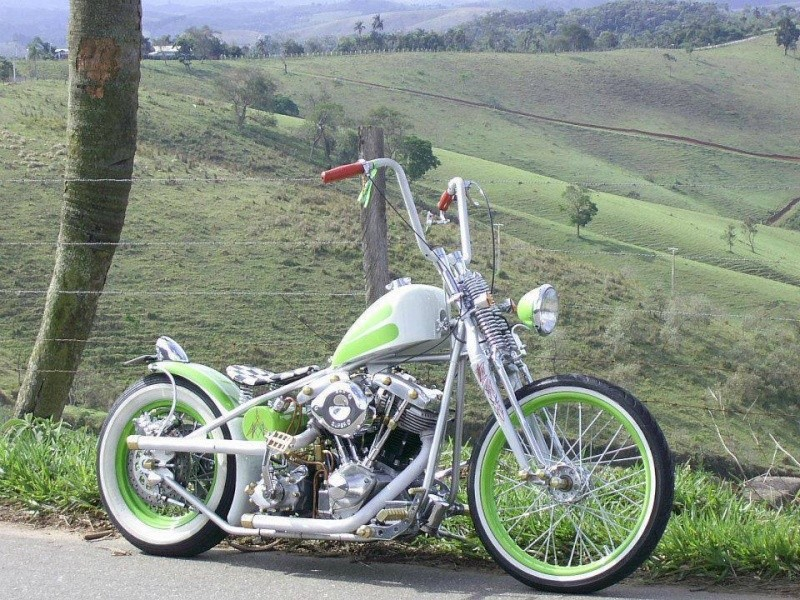 Bobbers & Bobbers choppers 10038510