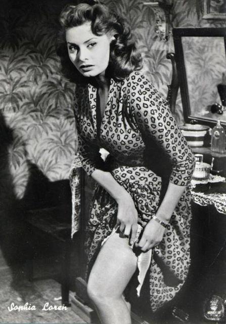 Sophia Loren 10044410