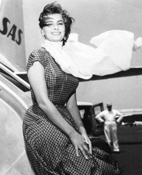 Sophia Loren 15045510