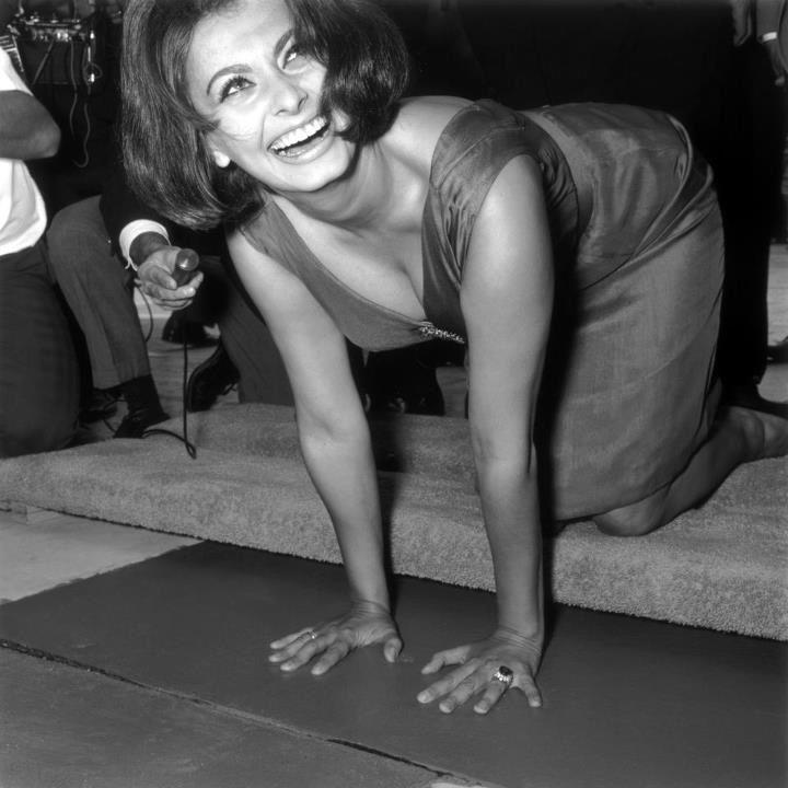 Sophia Loren 18237710