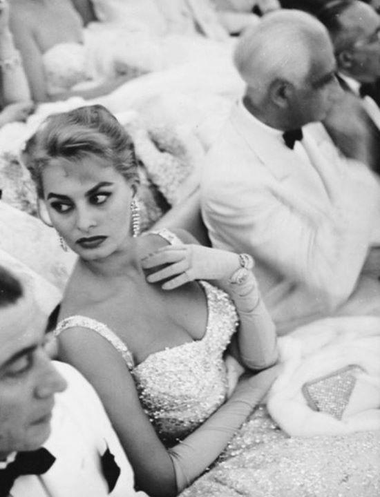 Sophia Loren 38232910