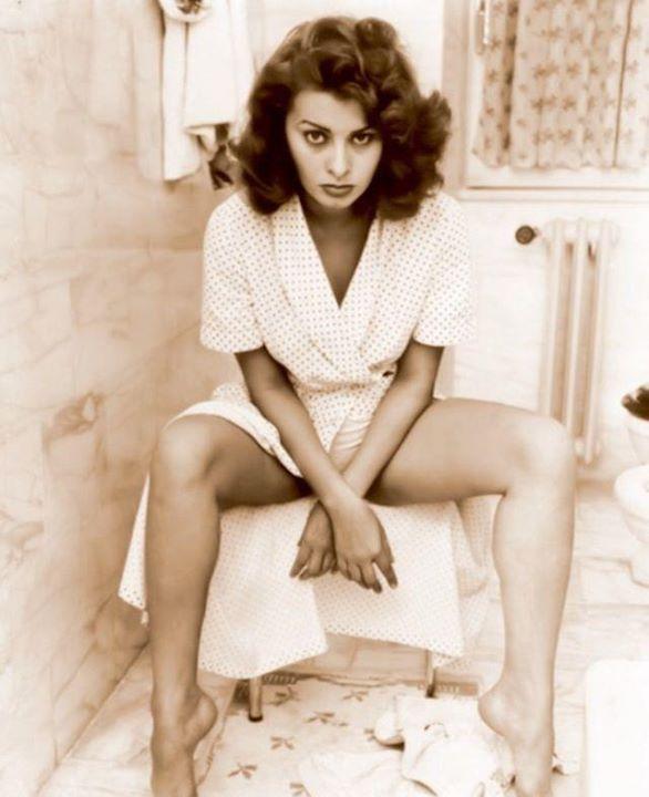 Sophia Loren 41760510