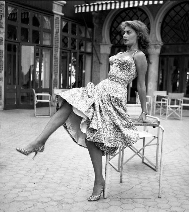 Sophia Loren 42041210