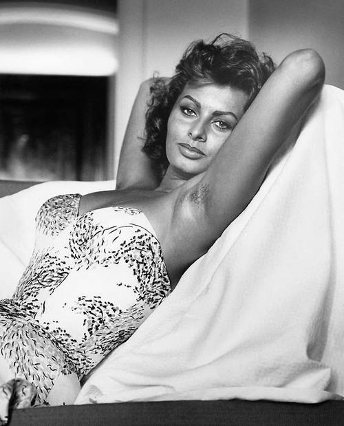 Sophia Loren 53374310