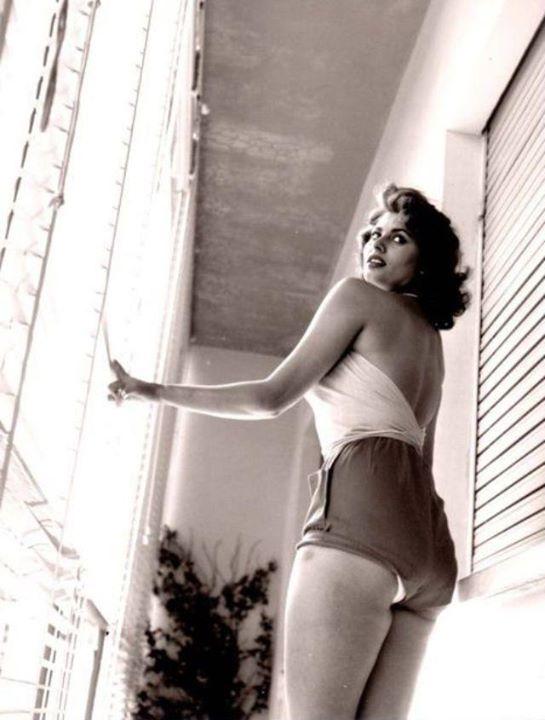 Sophia Loren 59896310