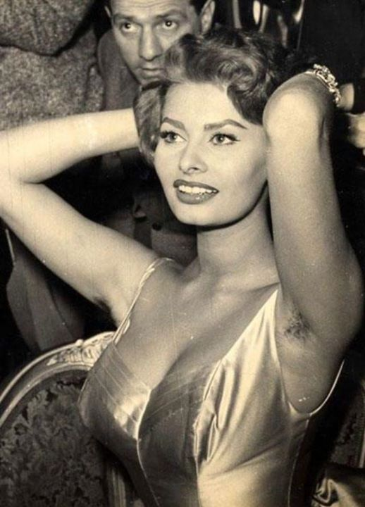 Sophia Loren 64468510