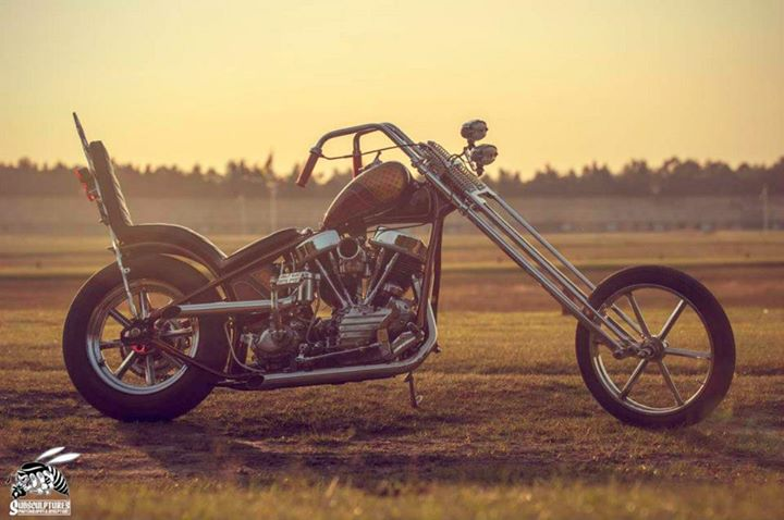 Choppers  galerie 69229_10