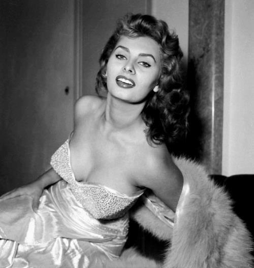 Sophia Loren 73510010