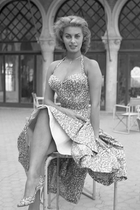 Sophia Loren 97218210