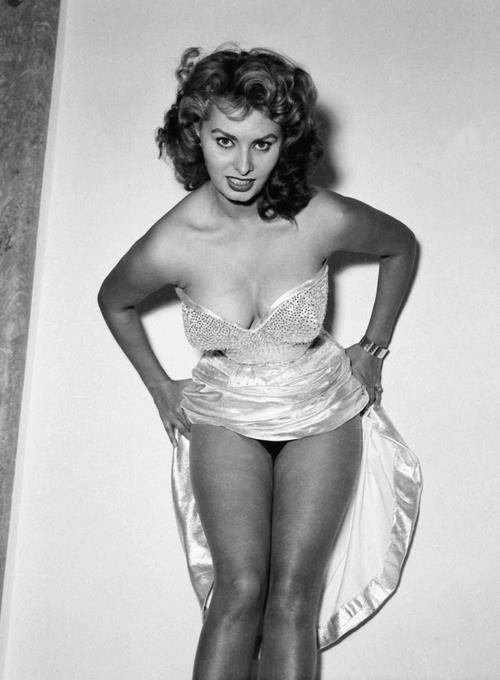 Sophia Loren 99673110