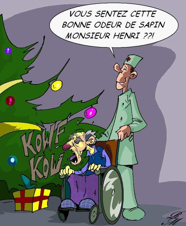 """Les """"Stupid Zèbres"""" c'est nous... - Page 5 Sapin10"""