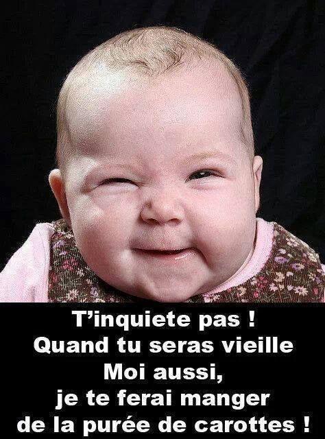"""Les """"Stupid Zèbres"""" c'est nous... - Page 5 Vengea10"""