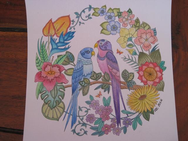 je vous montre enfin (coloriages) - Page 8 Img_7011