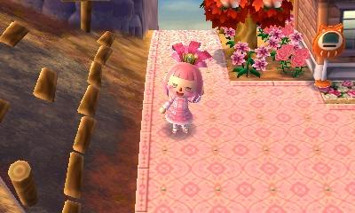Update zu Animal Crossing New Leaf - Seite 4 Image11