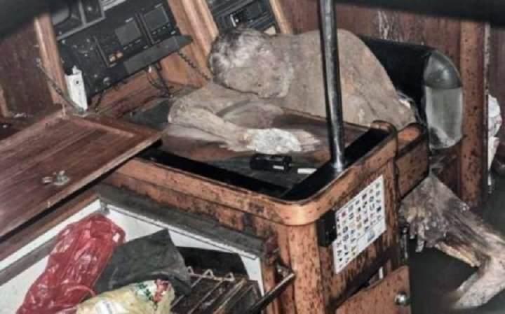 Le corps momifié d'un marin allemand est retrouvé  14570112