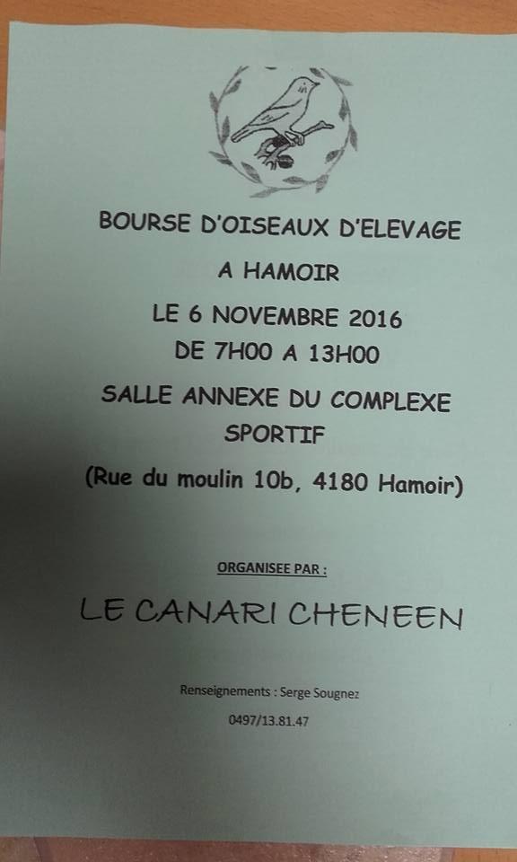 Bourse de Hamoir 14690910