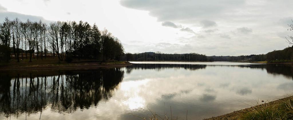 L'étang  11022023