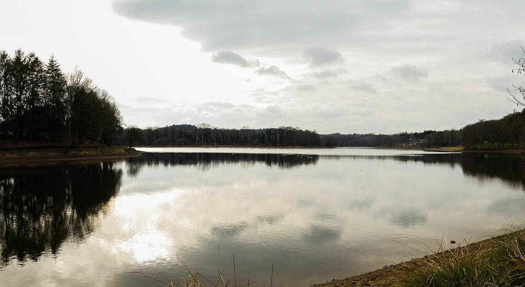 L'étang  11022024