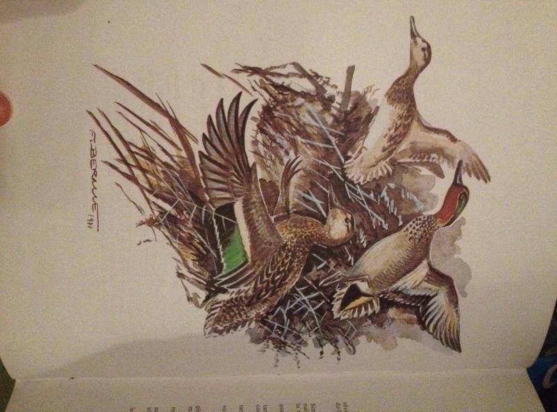 La chasse aux canards du Dr Rocher Img_1116