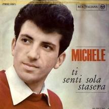 MICHELE Displa10