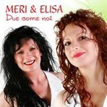MERI & ELISA Downl149
