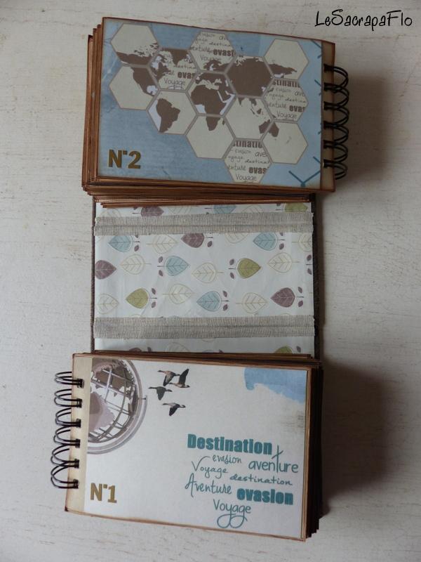 """SBO3 - l'album de Flo - """"détourement"""" - USA 2010 P1050015"""