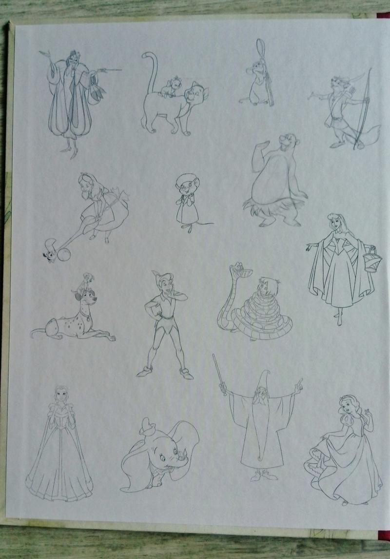 [Collection Press] N° 1 Walt Disney figurines de collection - Hachette - 01/2017 - Page 5 Dsc_0054