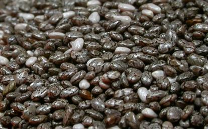 Graine de Chia Produi10