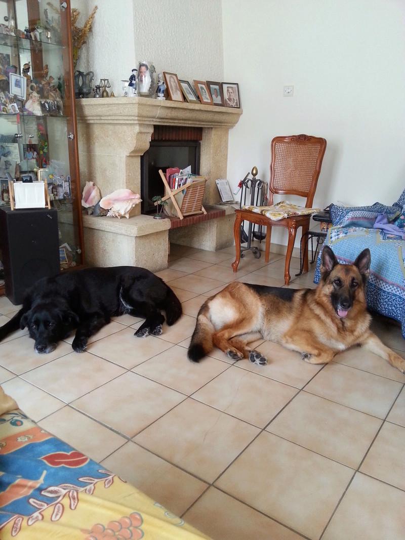 Mes petits Vacanciers adorés :) Edjybe12