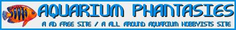 Aquarium Phantasies Site/Forum Untitl25