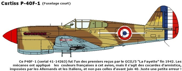[Hobby Boss] - Curtiss P40 rénovation en Groupe Lafayette 1943  - Page 2 Curtis10