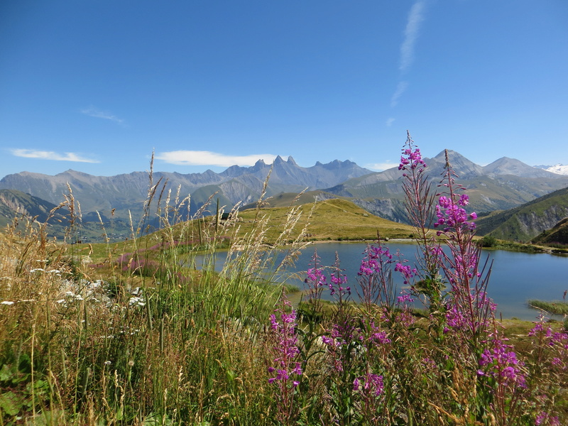 Entre Léman et Mont-Blanc Img_5210