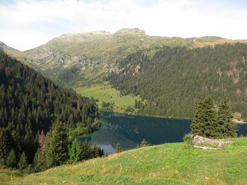 Entre Léman et Mont-Blanc Img_5610