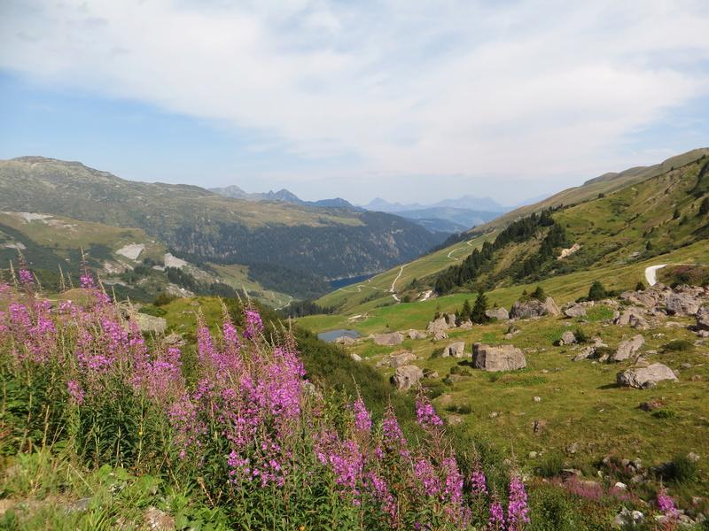 Entre Léman et Mont-Blanc Img_5611