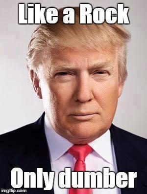 Donald Trump Vent Thread - Page 4 Trump_78