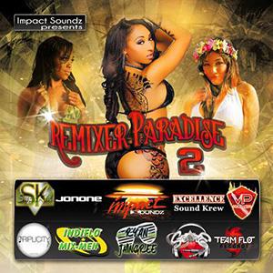 Various Remixers - Remixer Paradise Vol.2 [June 2013] Deeldr10
