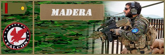 Presentacion CapMadera (Apto) Madera10