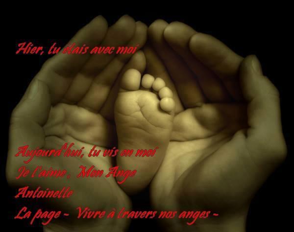 mon bébé d'amour guillaume - Page 4 10492410