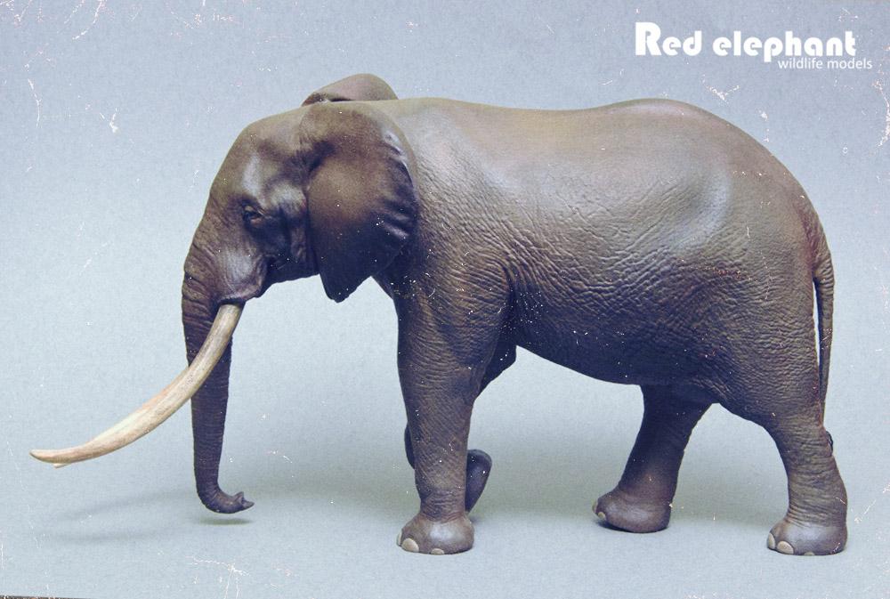 Large Bull African elephant replica Elepha14