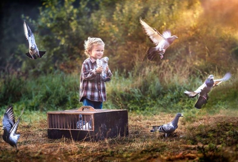 Les oiseaux  - Page 6 Oo10