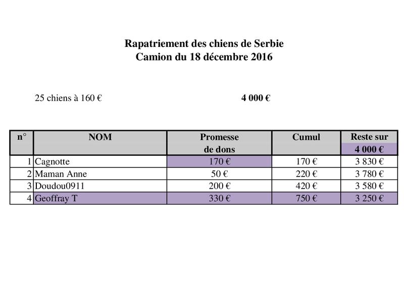 RAPATRIEMENT PAR CAMION SERBIE - arrivée le 18 décembre 2016 (Bella et Backa) 4000 € nécessaires - Page 2 Camion41
