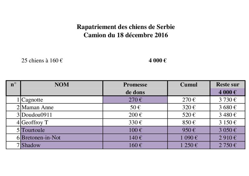 RAPATRIEMENT PAR CAMION SERBIE - arrivée le 18 décembre 2016 (Bella et Backa) 4000 € nécessaires - Page 2 Camion42