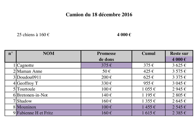 RAPATRIEMENT PAR CAMION SERBIE - arrivée le 18 décembre 2016 (Bella et Backa) 4000 € nécessaires - Page 2 Camion45