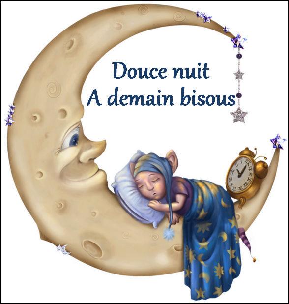 bonzour bonne zournée et bonne nuit notre ti nid za nous Bonne_10