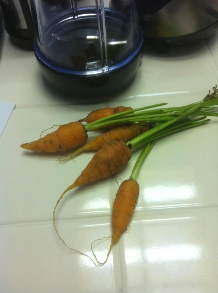 Carrot Week 2017! Carrot10