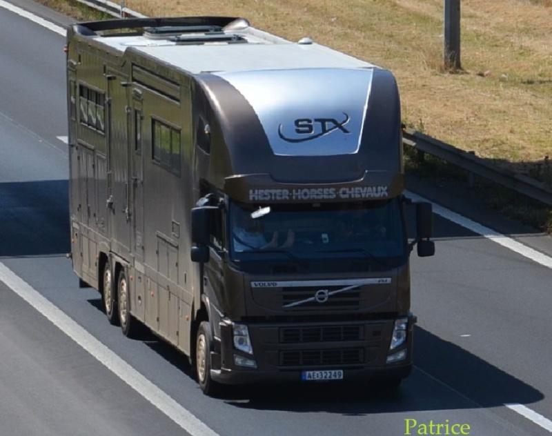 Transports de chevaux - Page 2 103pp11