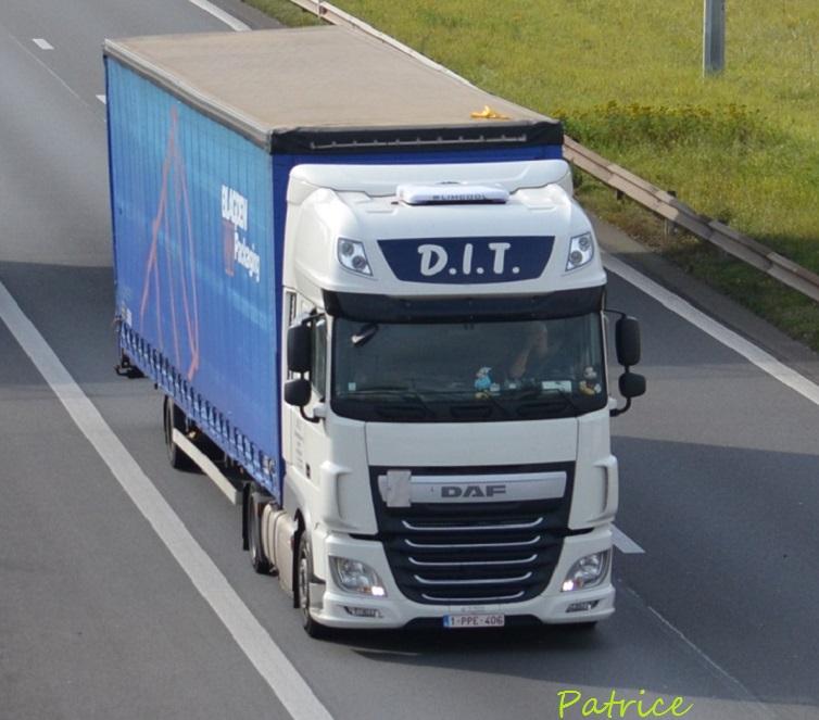 D.I.T (Dimitris International Transport) (Wielsbeke) 16911