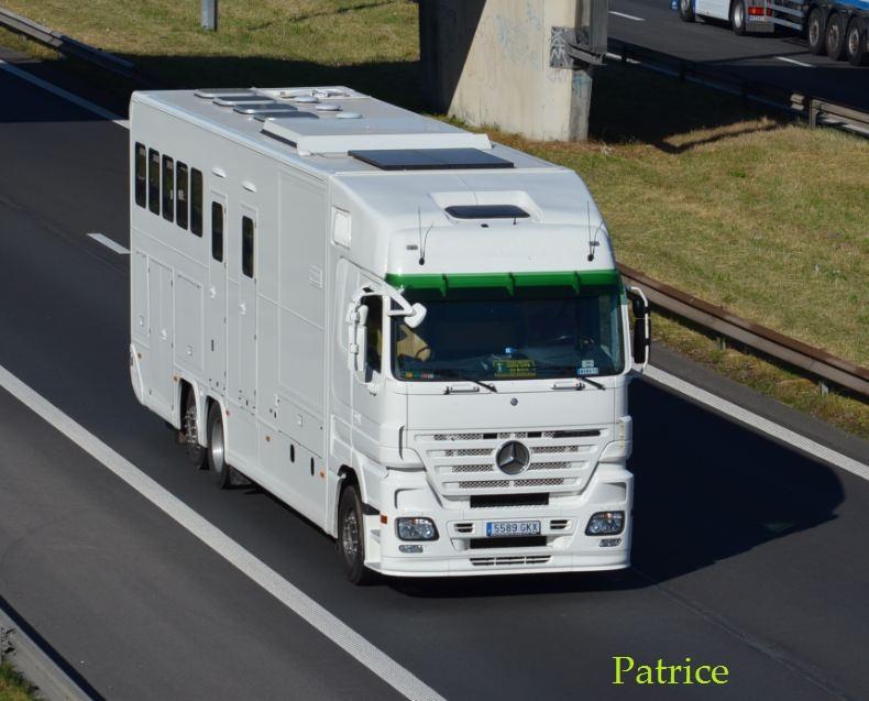 Transports de chevaux - Page 2 183pp10