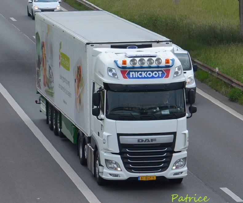 Nickoot - Viand Trans  (Rotterdam) 22112